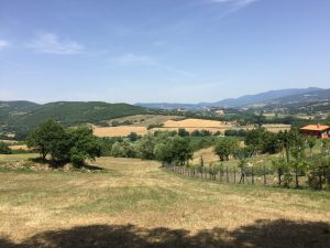 Bouwgrond kopen in Toscane, bouwkavel 2 Borgo La Casa, Casentino