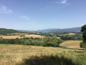 Bouwgrond kopen in Toscane, ruime bouwkavel 2 Borgo La Casa, Casentino